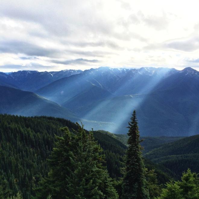 Hurricane Ridge Hike