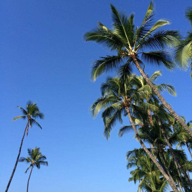 Puamana Oceanfront Condo community, Lahaina, Maui, Hawaii