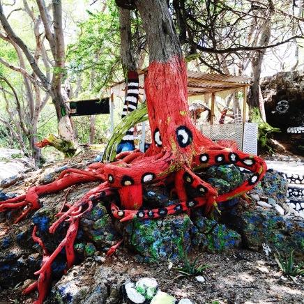 Octopus tree.